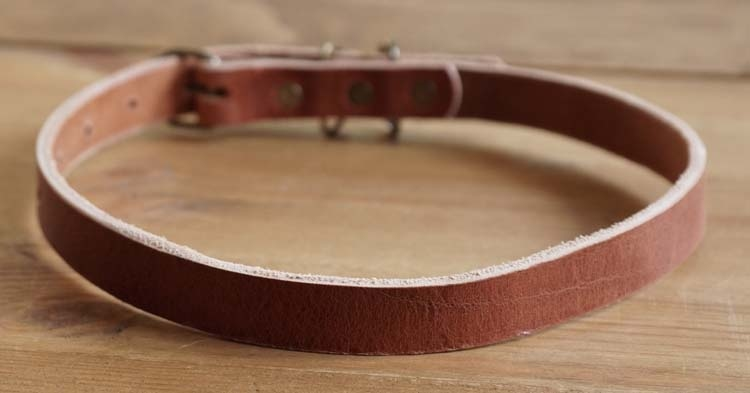 "Leren hondenhalsband  "" Bruin """