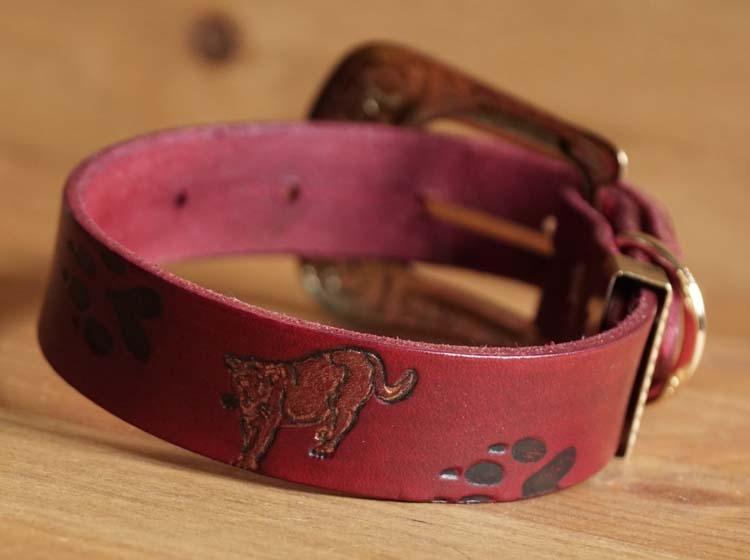 """Leren hondenhalsband  """" Tijger met poot afdrukken """"  Rood"""
